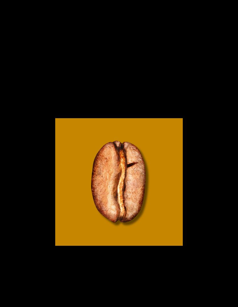 Blonde Bean